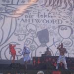 201408_Festival_RocknHeim_DIEANTWOORD_DSCF7251 Kopie