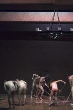 JoHempel_201409_Theater_Waffenschweine_Bonn_DSCF9413